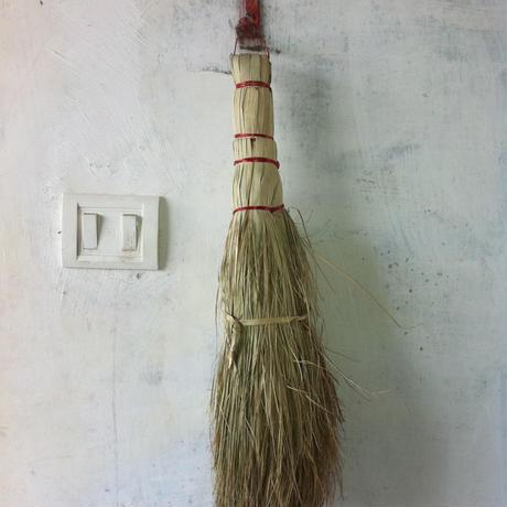 インドの箒 (短いほう)
