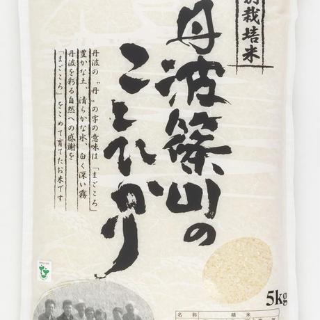 令和3年産丹波篠山市【特別栽培米】コシヒカリ精米 5kg