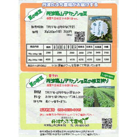 丹波篠山 夏のデカンショ豆 200g×5袋 クール便にて発送