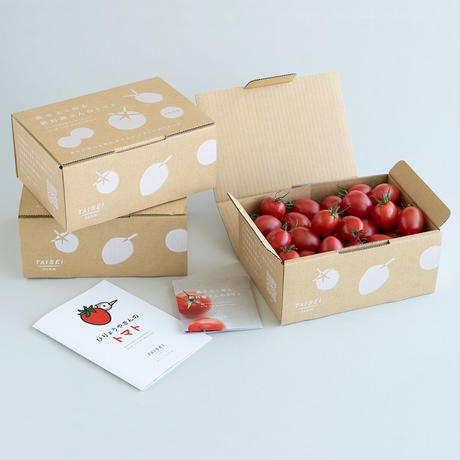 肥料屋さんのトマト 1㎏ × 1箱