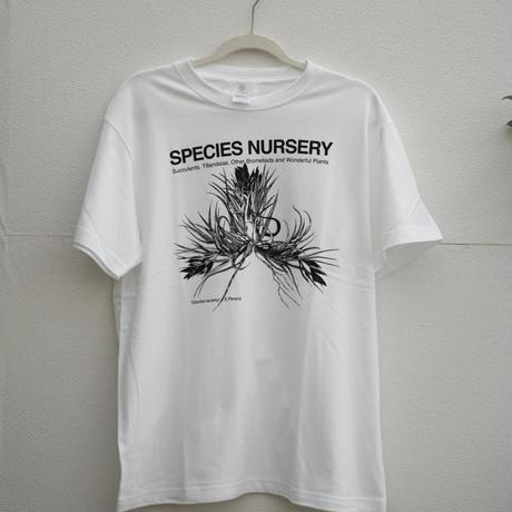SPECIES NURSERY  Tシャツ ティランジア カウツキー バージョン WB