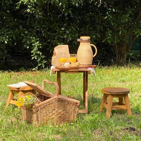 【8月】  picnic plan C