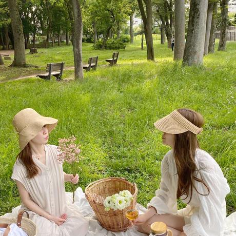 【7月】  picnic plan A