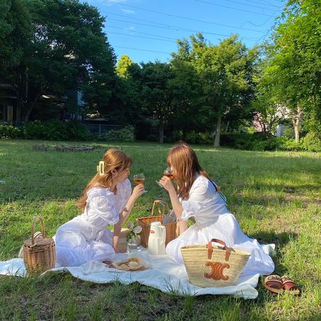 【7月】picnic set plan B