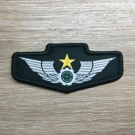 中国人民解放軍15式陸軍布製胸章ベルクロパッチ