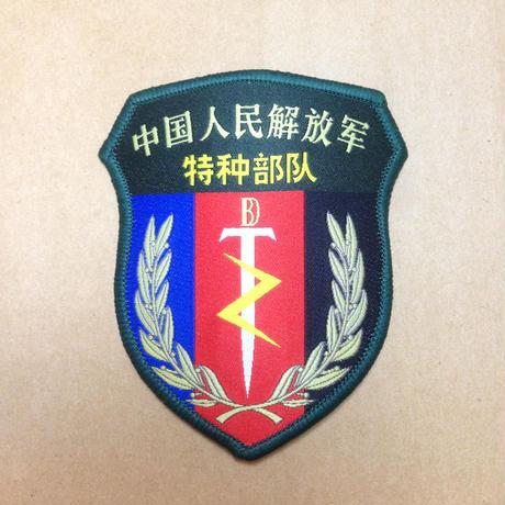 【特種部隊】中国人民解放軍07式部隊章