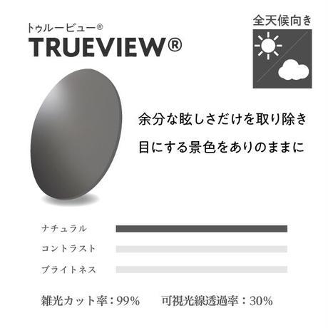 EMCオーバーグラス【パールホワイト】×【ガンメタル】EM6-D03C04(トゥルービュー)