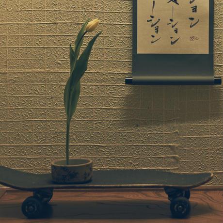 WALL 花器