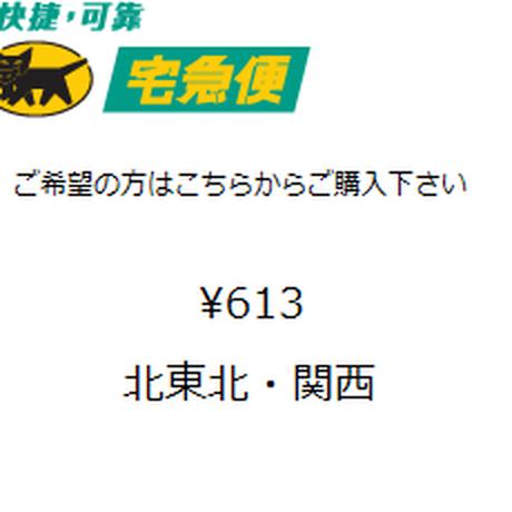 宅急便コンパクト(北東北・関西)(箱代含む)
