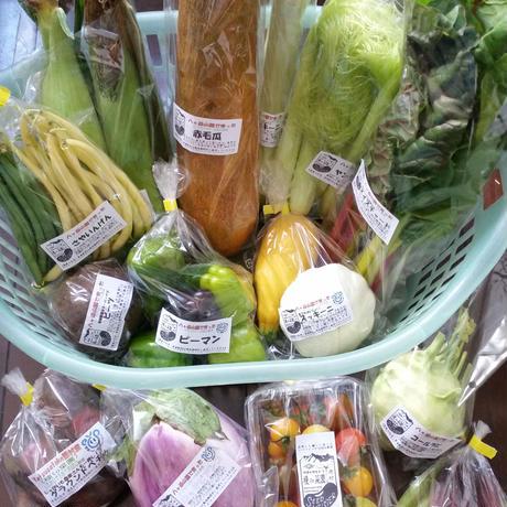 季節の変わり野菜セット(M)3150円    (送料・税込)