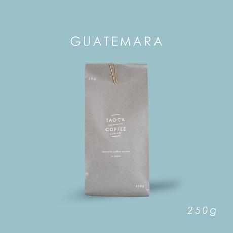 250g グアテマラ  カルモナ  深煎り