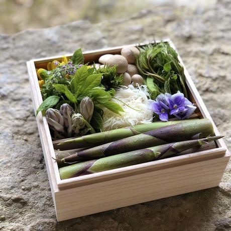 【期間限定商品】月山の山菜お重 #山菜料理 出羽屋