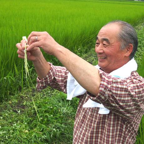 塩野室の滋養米コシヒカリ3kg #鬼怒川金谷ホテル
