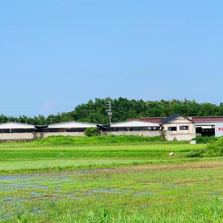 最高級松阪牛のロース・肩ロース(すき焼き用100g) #松阪まるよし