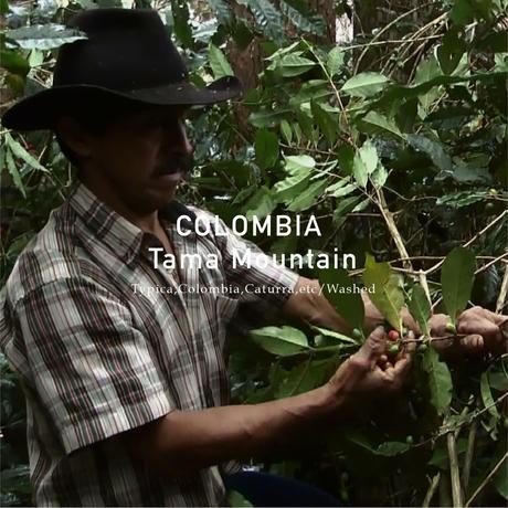 コロンビア シティロースト 200g