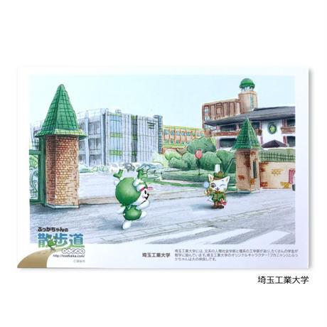 ふっかちゃんの散歩道2 ポストカード(第2弾)