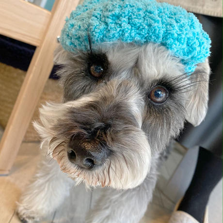 ふわふわベレー帽