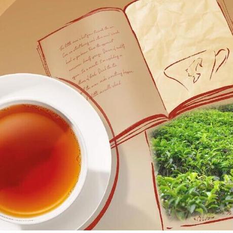 Julius Meinl リーフティー3種ギフト缶【Ⓑ茶葉】