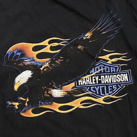 Harley Davidson / 90's Vintage, Villa Park S/S Tee