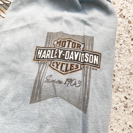 Harley Davidson / RK Stratman L/S Tee