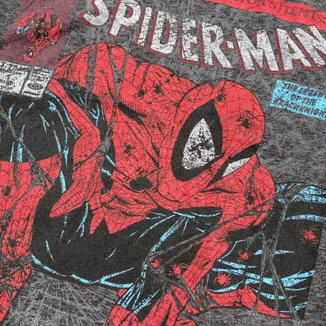 Marvel Comics / Spider-Man S/S Tee