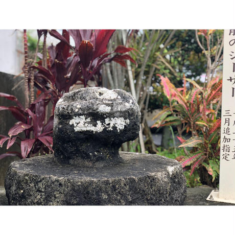 スクチャーシーサー【小,口開】粟石