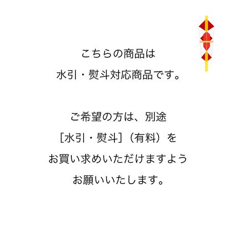 NAKAZAKI COFFEE ROASTER :ギフトセット【アイスコーヒー1本とドリップパック10枚】