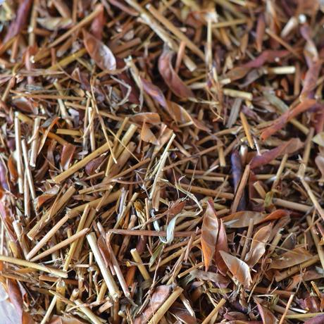 こぉか茶 (茶葉タイプ)