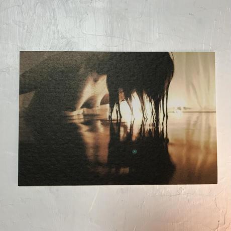 卯月沙梨音 ポストカード「蛹の刻」4