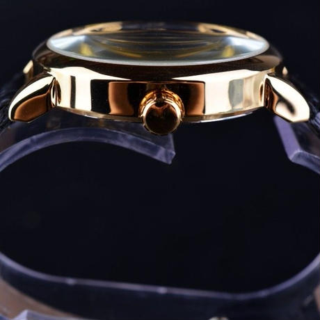 FORSINING メンズ腕時計 機械式 レザースケルトン レザーベルト 人気