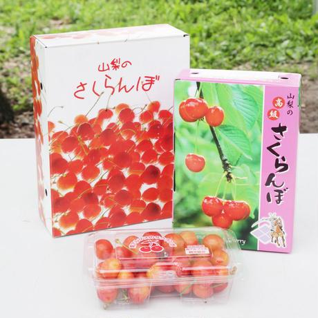 【おうちにお届けさくらんぼ】佐藤錦 1kg(4〜5人前用)