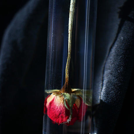 nooca 円柱キーホルダー バラ赤