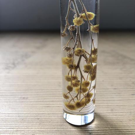 nooca  円柱キーホルダー ミモザ