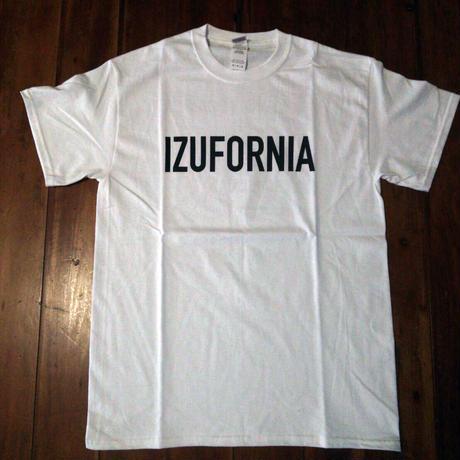IZUFORNIA T 007