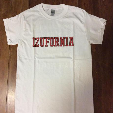 IZUFORNIA College logo T 014 WH