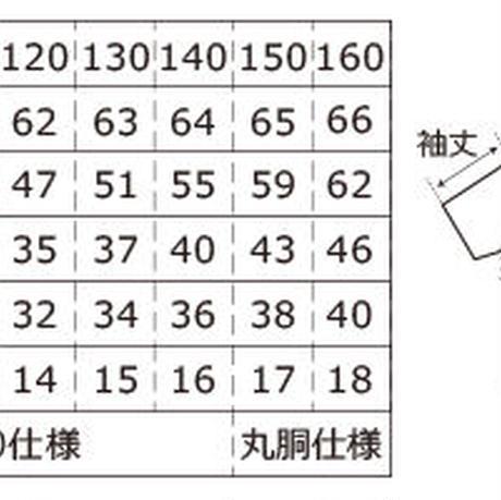5ea235c455fa030b8a29f972