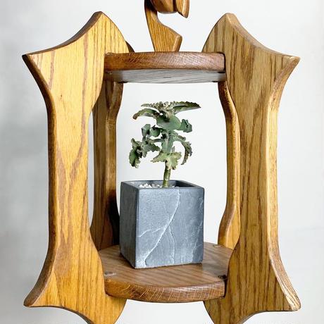 Caved wood hanging planter