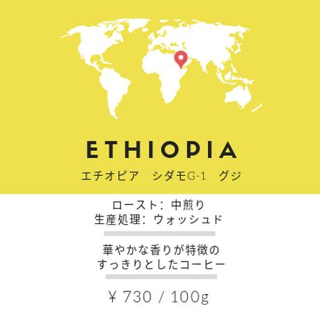 コーヒー 豆 エチオピア(100g)