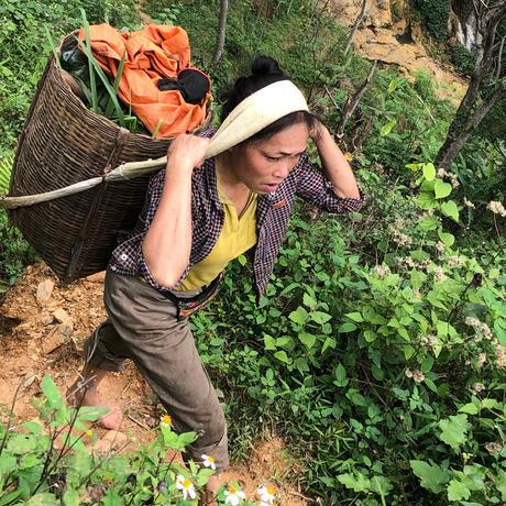 2020/1/13薬草大学KYOTO#2【ベトナムの薬草と健やかな暮らし   ~東南アジアのナチュラルハーブシャンプーを使ってみよう!~】