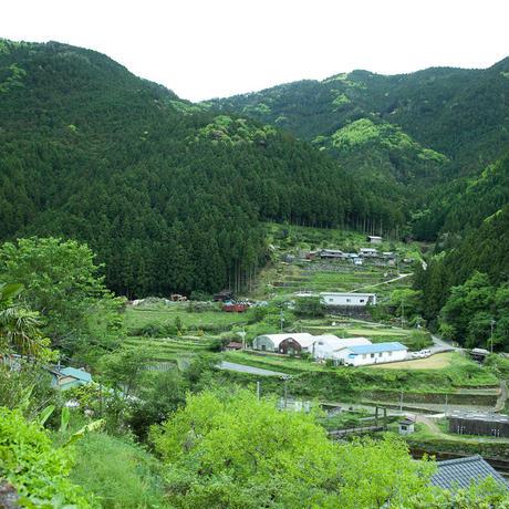 2019.08.24-25阿波番茶収穫&仕込み体験@徳島県上勝町