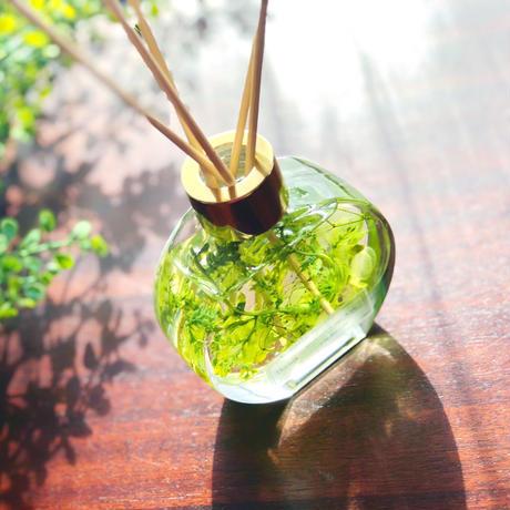 爽やかグリーンの香りのインテリア【天然100%アロマリードディフューザー】