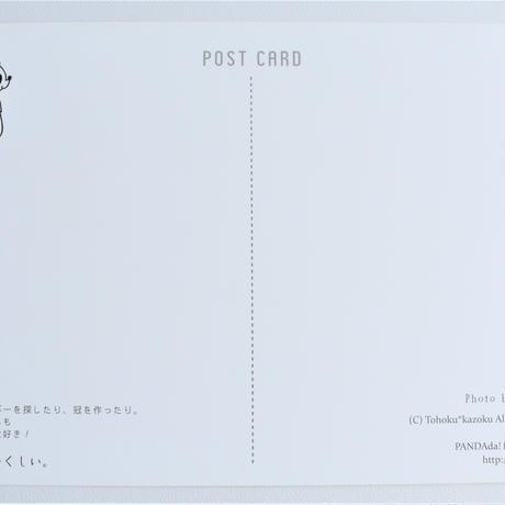 みちのくパンダポストカード(シロツメクサ)