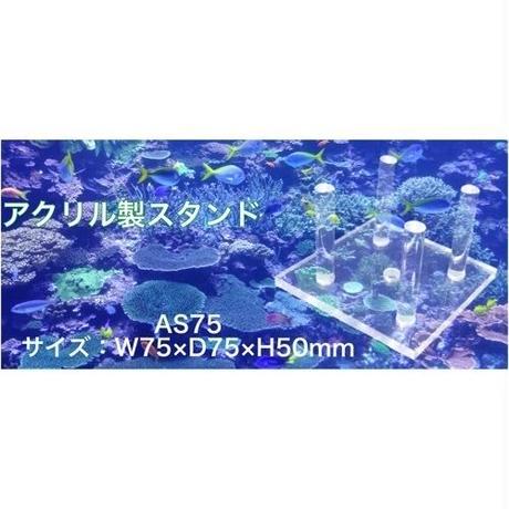 アクリル製スタンド  AS75 ライブロックスタンド(75×75×50) 水槽用 レイアウト用 ライブロック用 サンゴなどに アクリル 台 サンゴ台 珊瑚台