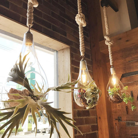 BOTANIC HANGING LIGHT L-FGA