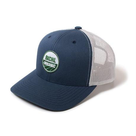 Back Channel-ORGANIC LOGO MESH CAP