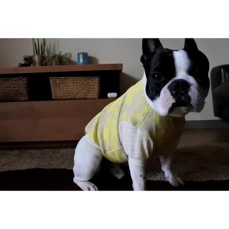 たんぽぽ柄のTシャツ    [フレブル服TiTiTi]