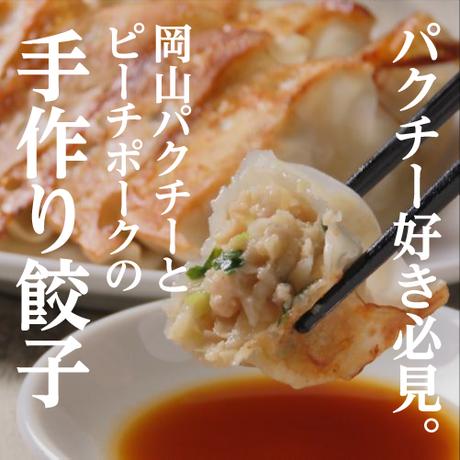 岡山餃子No.2(岡山パクチー)【岡山餃子製作所(岡山県)】