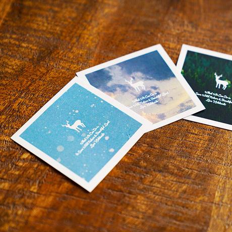 TNOC THE FRAGRANCE CARD