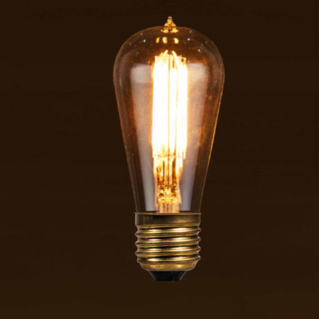 """LED Edison Bulb """"Signature(S)"""""""