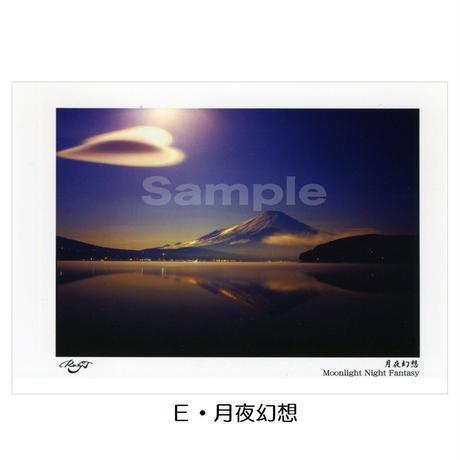 ポストカード 同柄3枚入り (4種類掲載)